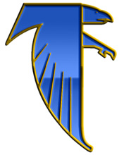 Blue & Gold Falcon