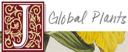 Jstor Global Plants button